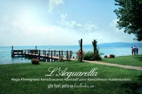 acquarella1